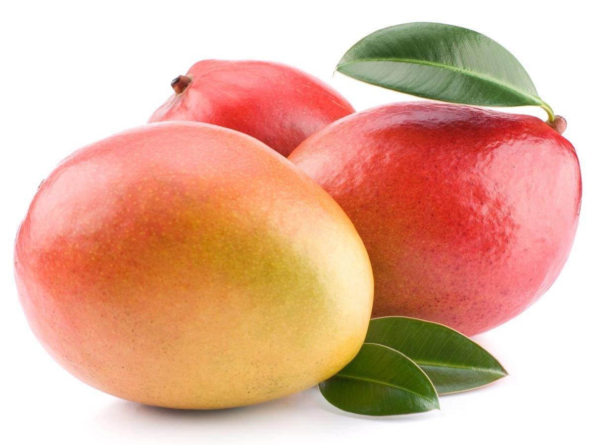 neelam_mango1.jpg