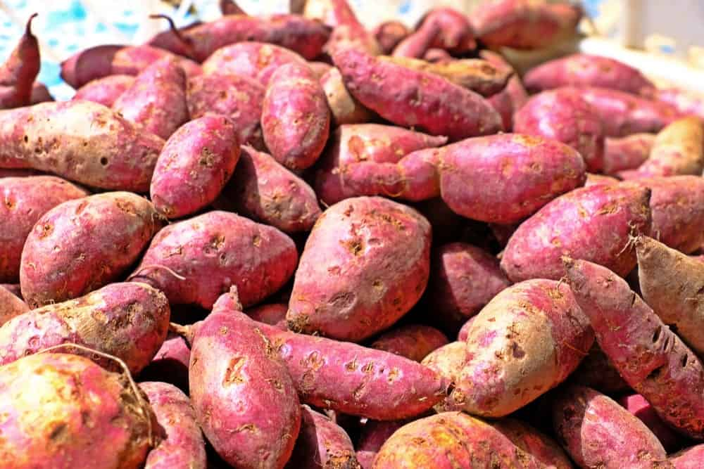 red-jewel-sweet-potatoes.jpg